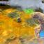 Ключ активации Warlock 2: The Exiled - The Good, the Bad, & the Muddy