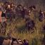 Лицензионный ключ Total War: Rome II - Культура колоний Причерноморья. (дополнение)