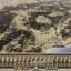 Лицензионный ключ Total War: Rome II - Empire Divided