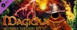 Купить Magicka: Wizard's Survival Kit. Дополнение