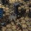 Expeditions Conquistador для PC