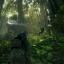 Ключ активации Tom Clancy's Ghost Recon Wildlands. Gold Edition