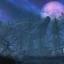 Скриншот из игры The Elder Scrolls V: Skyrim VR